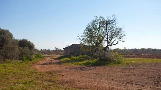 Landgrundstück zu verkaufen in Buger - 190.000 € (Ref: 5366008)
