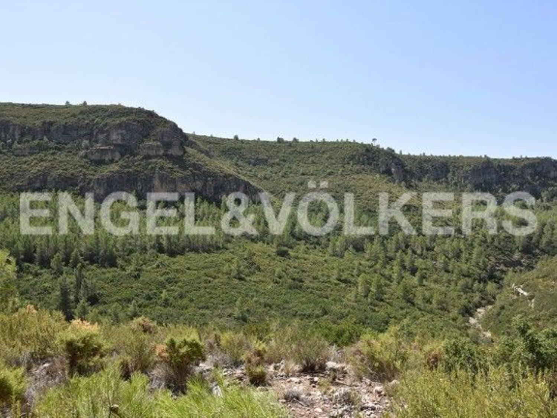 Landgrundstück zu verkaufen in Moixent - 900.000 € (Ref: 4359229)