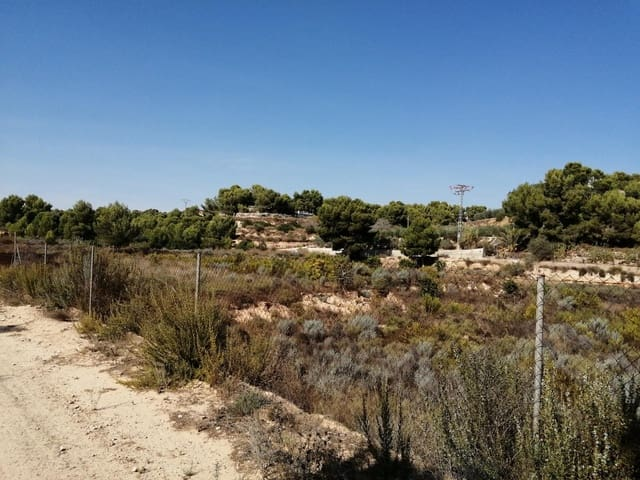 Byggetomt til salgs i Pilar de la Horadada - € 99 000 (Ref: 3683739)