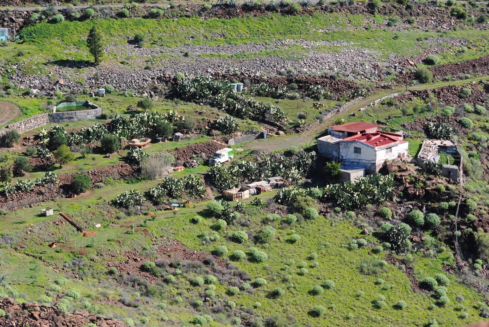 Finca/Casa Rural de 1 habitación en Temisas en venta - 160.000 € (Ref: 4580562)