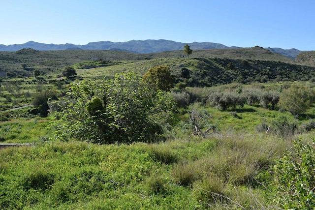 Rakentamaton maa myytävänä paikassa Los Gallardos - 45 000 € (Ref: 3548569)