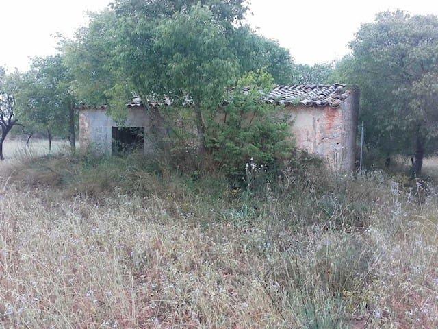 Terreno Não Urbanizado para venda em Binissalem - 190 000 € (Ref: 3942562)