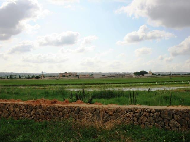 Ubebygd land til salgs i Son Gual - € 330 000 (Ref: 4146499)