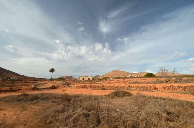 Ruin till salu i La Asomada - 110 000 € (Ref: 3835464)