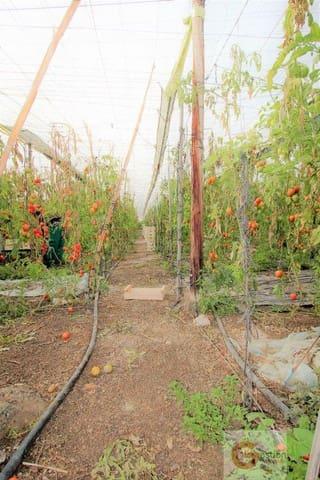 Terreno para Construção para venda em Torrenueva - 90 000 € (Ref: 5897274)