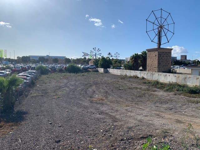 Terre non Aménagée à vendre à L'Aranjassa / S'Aranjassa - 550 000 € (Ref: 5055155)