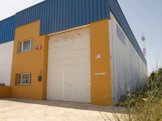 Bedrift til salgs i San Luis / Sant Lluis - € 245 000 (Ref: 5516310)