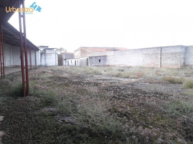 Działka budowlana do wynajęcia w Olivenza - 600 € (Ref: 4245129)