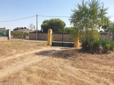 Solar/Parcela en Badajoz ciudad en venta - 137.000 € (Ref: 5438624)