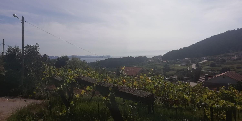 Terreno/Finca Rústica en Sanxenxo en venta - 75.000 € (Ref: 4578121)
