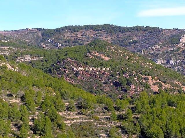 Undeveloped Land for sale in Borriol - € 99,000 (Ref: 5587611)