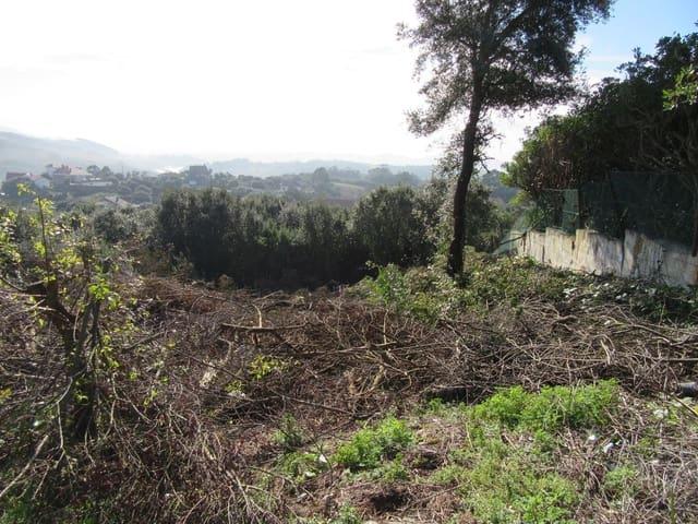 Ubebygd land til salgs i Bareyo - € 60 000 (Ref: 4033298)