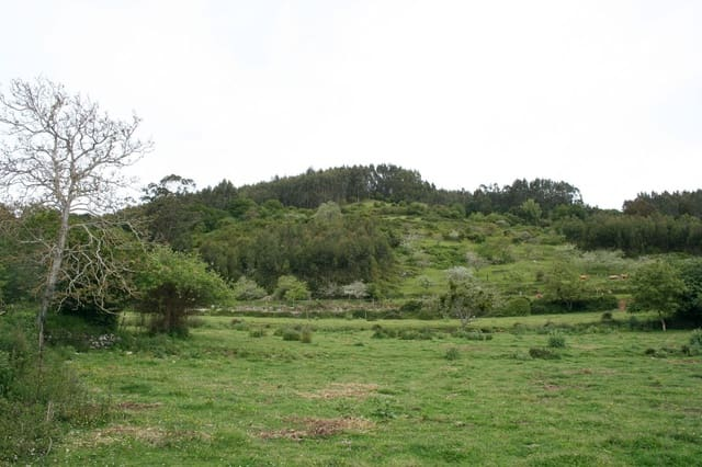 Terreno Não Urbanizado para venda em Villaviciosa - 90 000 € (Ref: 4073587)