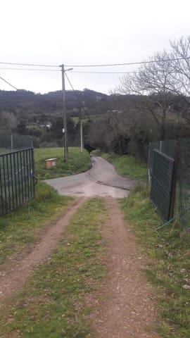 Terreno Non Edificato in vendita in Carreno - 50.000 € (Rif: 4632668)