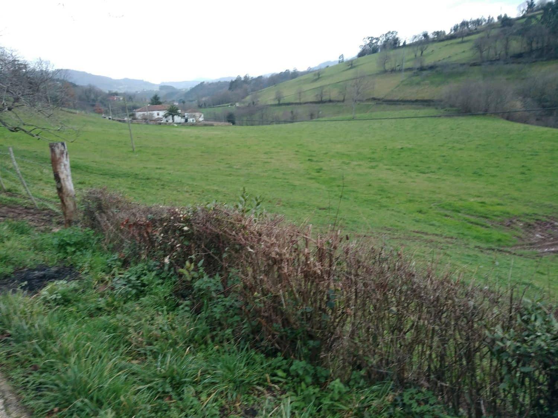 Undeveloped Land for sale in Villaviciosa - € 45,000 (Ref: 5061354)