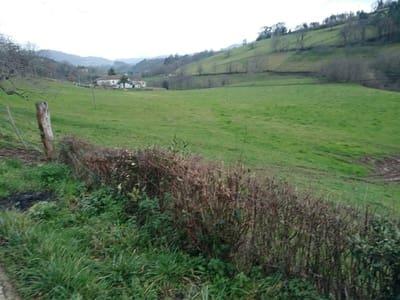 Terre non Aménagée à vendre à Villaviciosa - 45 000 € (Ref: 5061354)