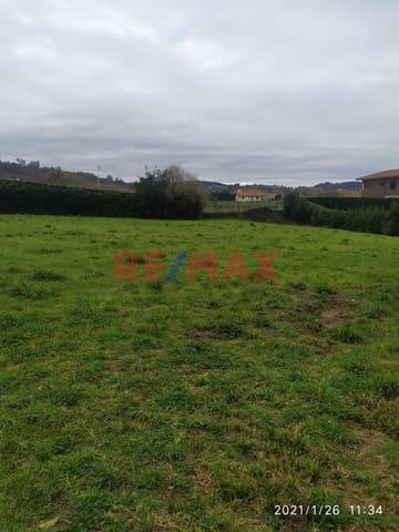 Undeveloped Land for sale in Villaviciosa - € 115,000 (Ref: 5882376)