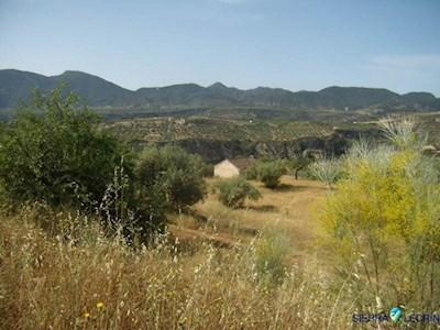 House in Albunuelas (LVA676) - CheckPablo