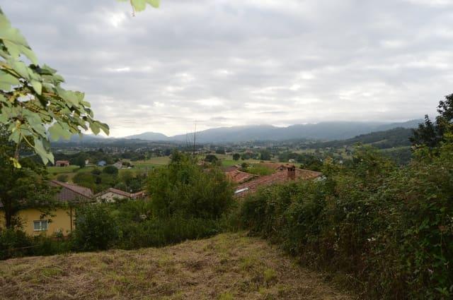 Działka budowlana na sprzedaż w Villaviciosa - 22 000 € (Ref: 5481345)
