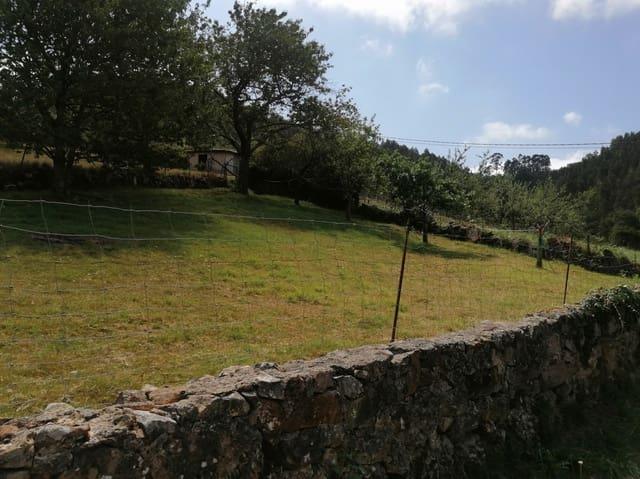 Area Edificabile in vendita in Villaviciosa - 56.000 € (Rif: 5540729)