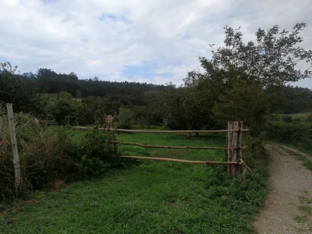 Area Edificabile in vendita in Villaviciosa - 60.000 € (Rif: 5600092)