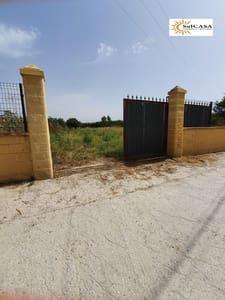 Finca/Hus på landet till salu i Alhaurin de la Torre - 80 000 € (Ref: 5395842)