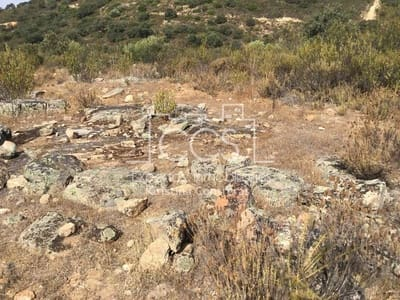 Undeveloped Land for sale in El Ronquillo - € 40,000 (Ref: 3733655)