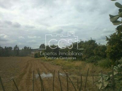 Terre non Aménagée à vendre à Cantillana - 120 000 € (Ref: 3733766)