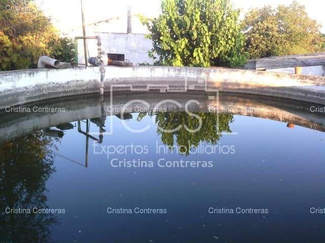 Finca/Casa Rural de 3 habitaciones en Sanlúcar la Mayor en venta con piscina garaje - 378.000 € (Ref: 3734005)