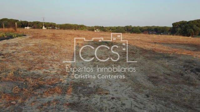 Działka budowlana na sprzedaż w Almonte - 125 000 € (Ref: 4115322)