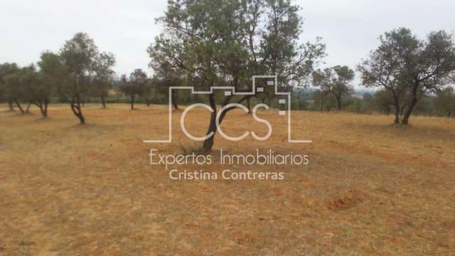 Bauplatz zu verkaufen in Almonte - 19.000 € (Ref: 4696874)