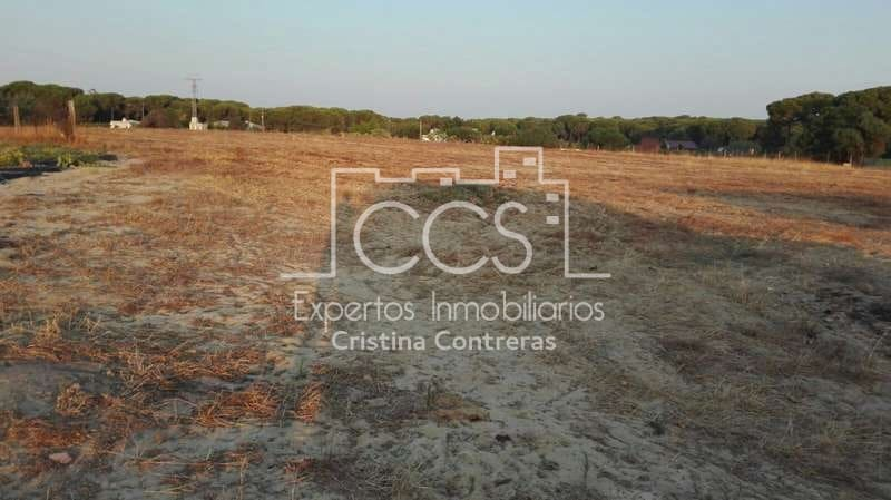 Building Plot for rent in Almonte - € 750 (Ref: 4704541)