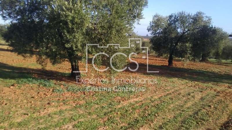 Solar/Parcela en Almonte en venta - 130.000 € (Ref: 5014237)