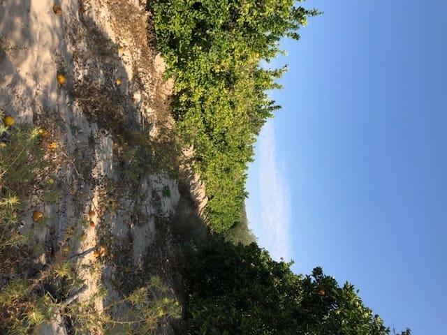 Terreno Não Urbanizado para arrendar em Yeste - 20 000 € (Ref: 6233942)
