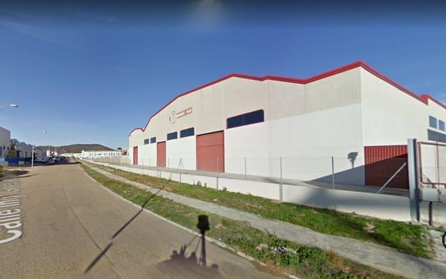 Komercyjne na sprzedaż w Talavera de la Reina - 2 064 000 € (Ref: 5683360)