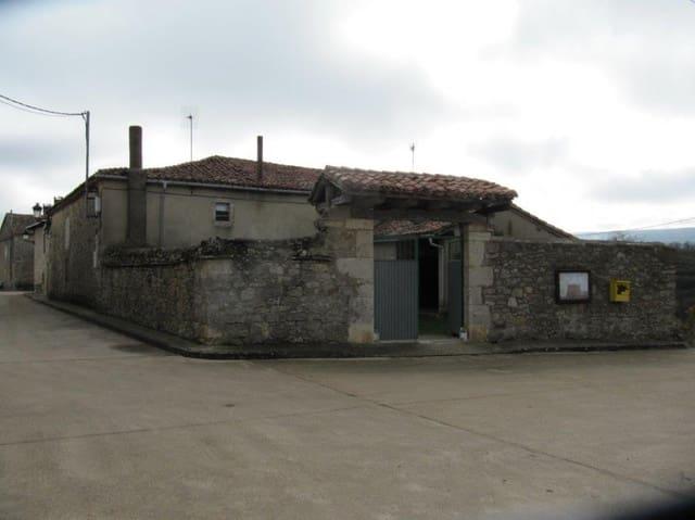 3 sypialnia Dom szeregowy na sprzedaż w Valle de Valdelucio - 40 000 € (Ref: 4852582)