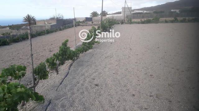 Ubebygd land til salgs i Granadilla de Abona - € 180 000 (Ref: 5439524)
