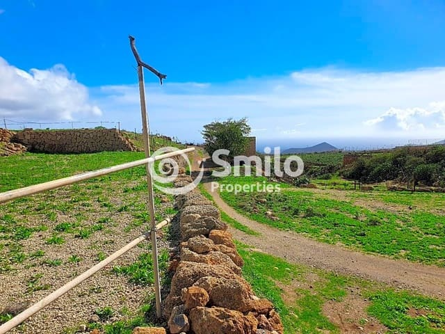 Terreno Não Urbanizado para venda em Granadilla de Abona - 150 000 € (Ref: 5828366)