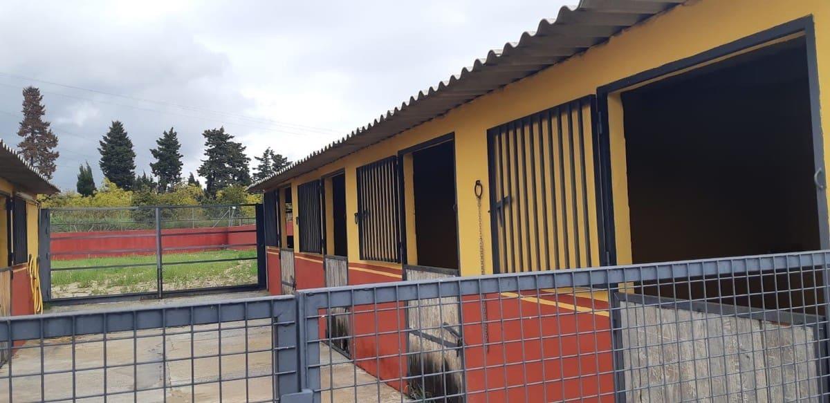 Commercieel te huur in Estepona - € 650 (Ref: 5247016)
