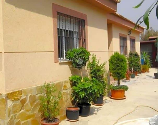3 sovrum Villa till salu i Turis med pool - 155 000 € (Ref: 4923605)