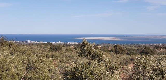Terreno Não Urbanizado para venda em El Perello - 125 000 € (Ref: 4950478)