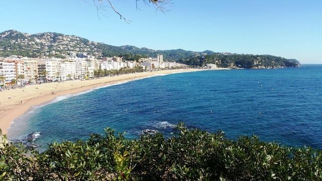 Comercial para arrendar em Lloret de Mar - 50 000 € (Ref: 6334806)