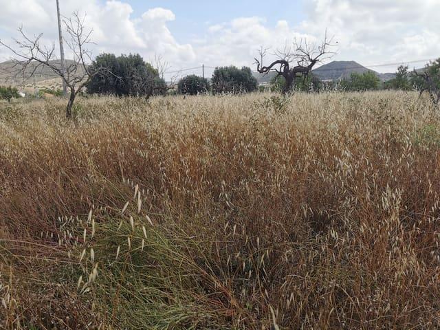 Terreno Não Urbanizado para venda em Tallante - 169 900 € (Ref: 6127015)