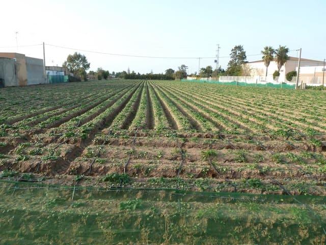 Działka budowlana na sprzedaż w Sanlucar de Barrameda - 80 000 € (Ref: 4456395)