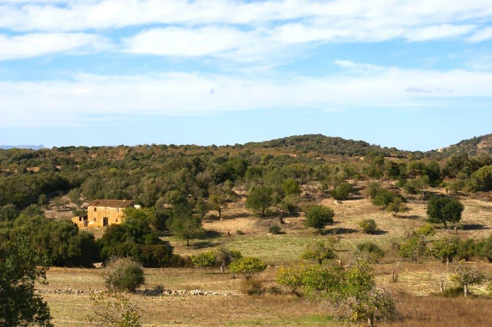 Ubebygd land til salgs i San Lorenzo - € 495 000 (Ref: 4379583)