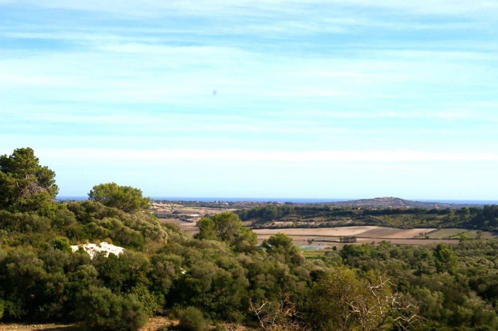 Ubebygd land til salgs i San Lorenzo - € 495 000 (Ref: 4379585)