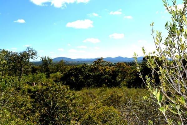 Terreno Non Edificato in vendita in Sant Llorenc des Cardassar - 315.000 € (Rif: 4578147)