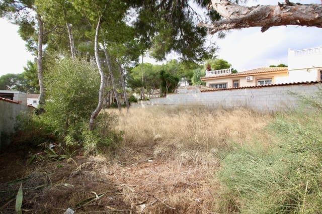 Building Plot for sale in Pinar de Campoverde - € 100,000 (Ref: 5725462)