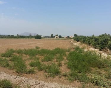 Building Plot for sale in Daya Nueva - € 459,000 (Ref: 5305282)