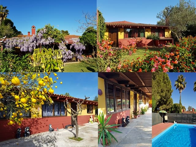 9 makuuhuone Maalaistalo myytävänä paikassa Carmona mukana uima-altaan  autotalli - 449 500 € (Ref: 4541091)